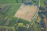 L'agricoltura biologica produzioni biologiche saporelite